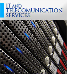 IT and Telecomunication Services